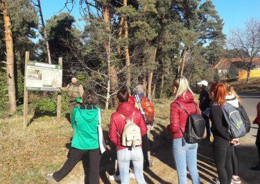 Excursie in rezervația Stejerișul Mare