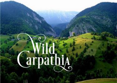 Proiectii de film: Wild Carpathia 1-5